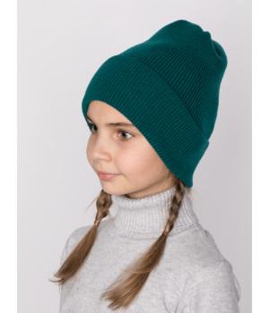 Барни шапка трикотажная
